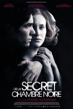 Le Secret de la chambre noire (2017)